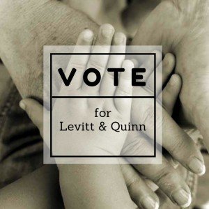 http://tinyurl.com/VOTE4LQ -- Levitt & Quinn is nominated for the Louis M. Brown Award for Legal Access.